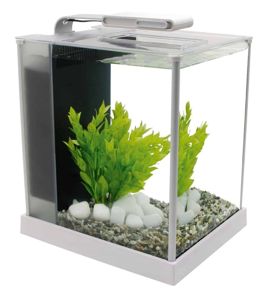 office desk fish tank. Aquarium Starter Kit Office Desk Fish Tank