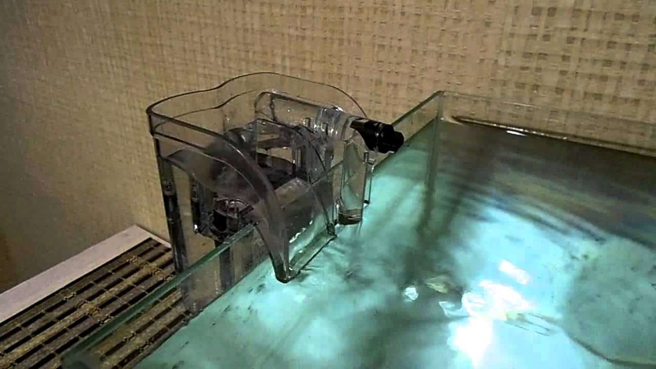 Power filter fabled fish for Do betta fish sleep on the bottom of the tank